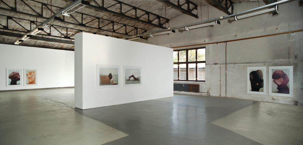 Daniela Steinfeld: Full Horn, Installation view