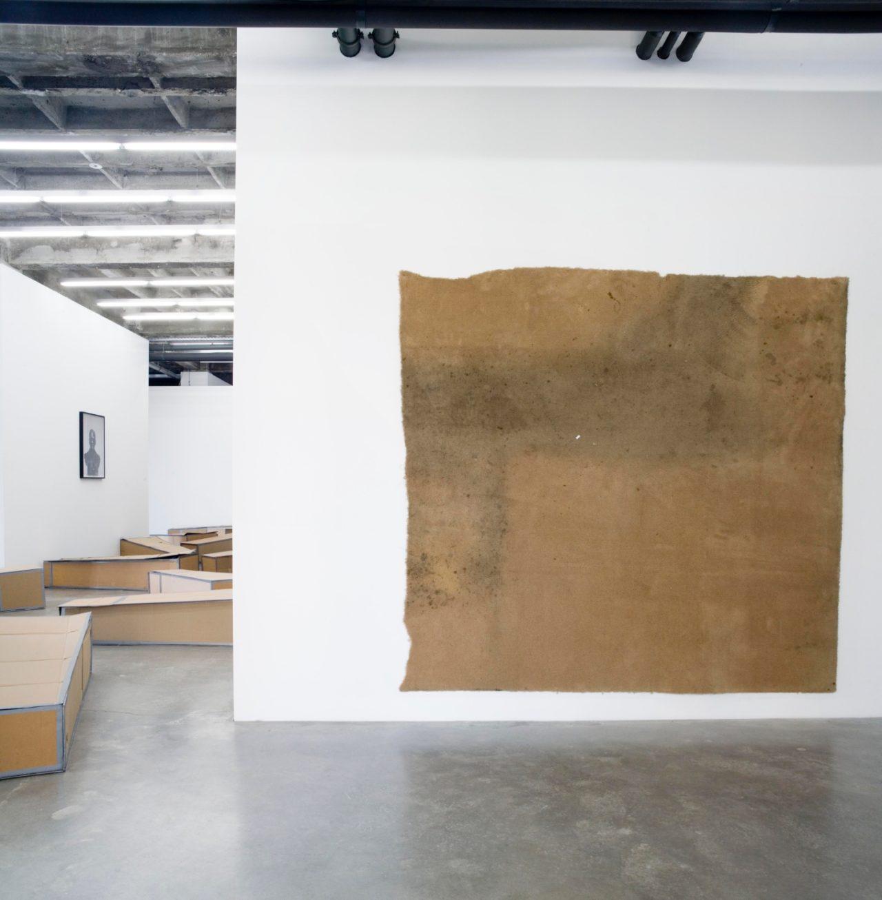 Rodney McMillian, Installation view
