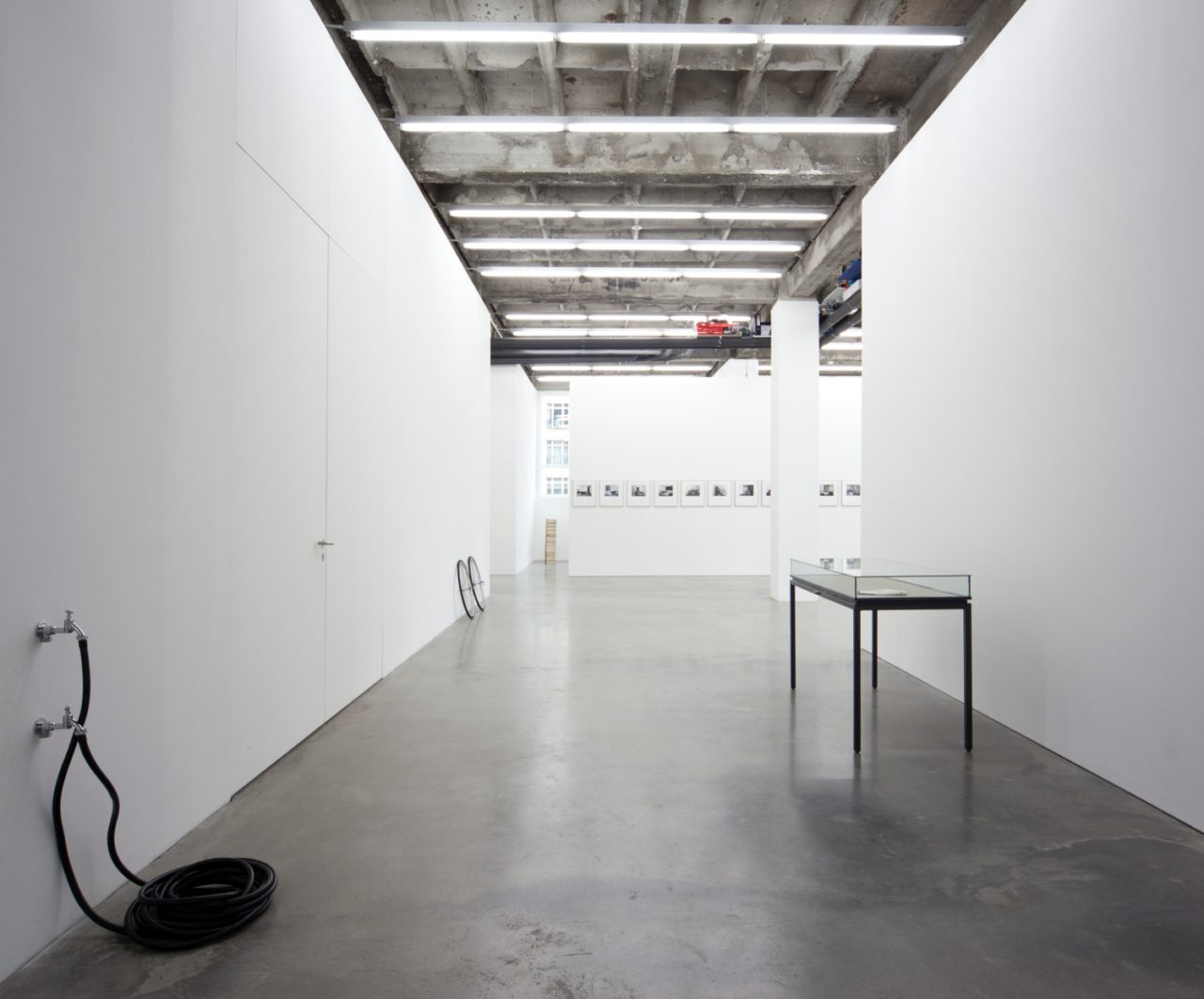 Rogalski, Installationsansicht